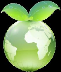 Greendot Company